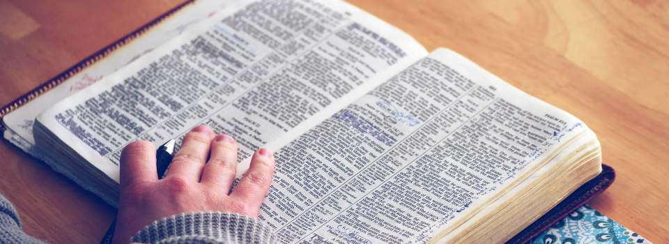 Going deeper in the Word of God